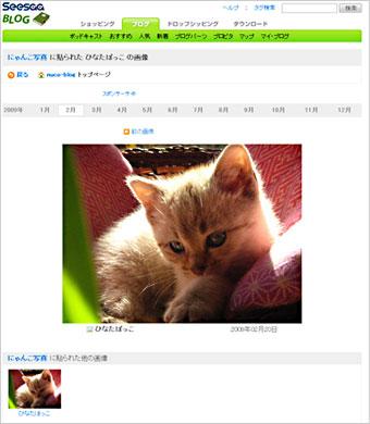 gazou_syosai_02.jpg